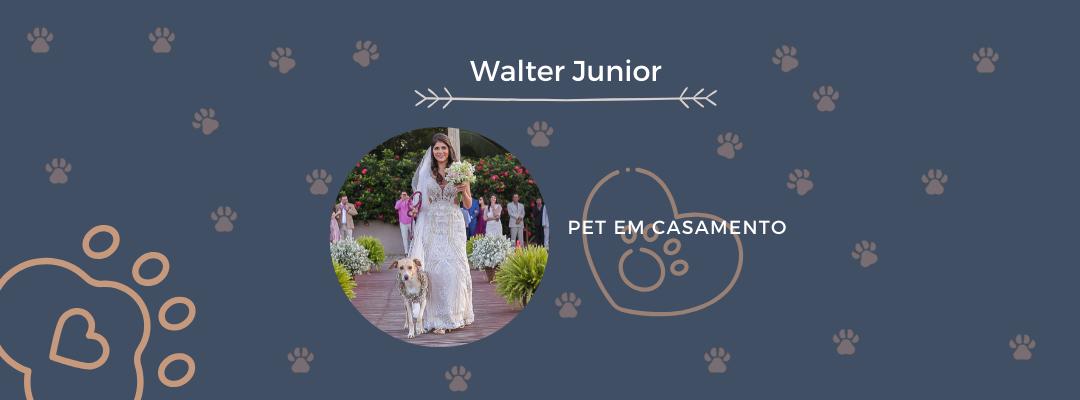 Imagem capa - PET EM CASAMENTO por Walter Junior