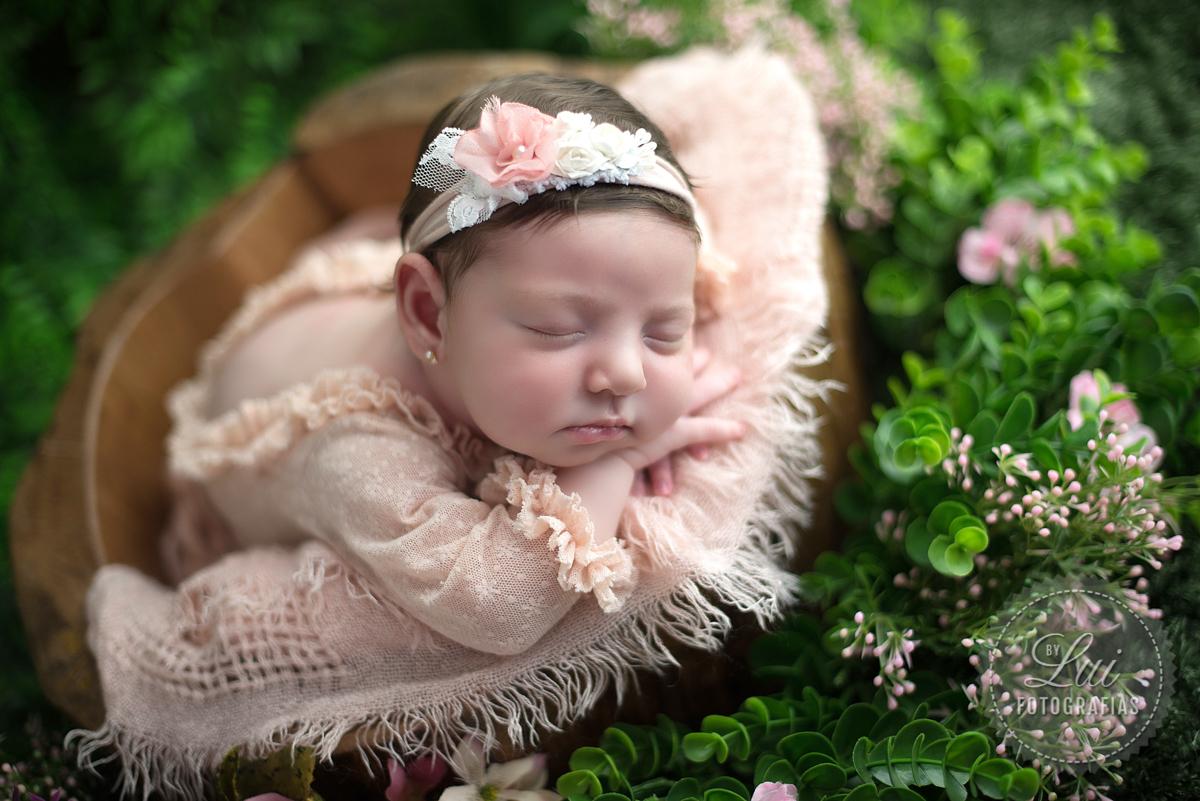 Imagem capa - Newborn Maria Eduarda por Luiziane Segala