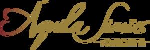 Logotipo de Áquila Simões