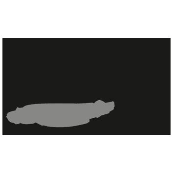 Logotipo de Espaço Mansão do Lago
