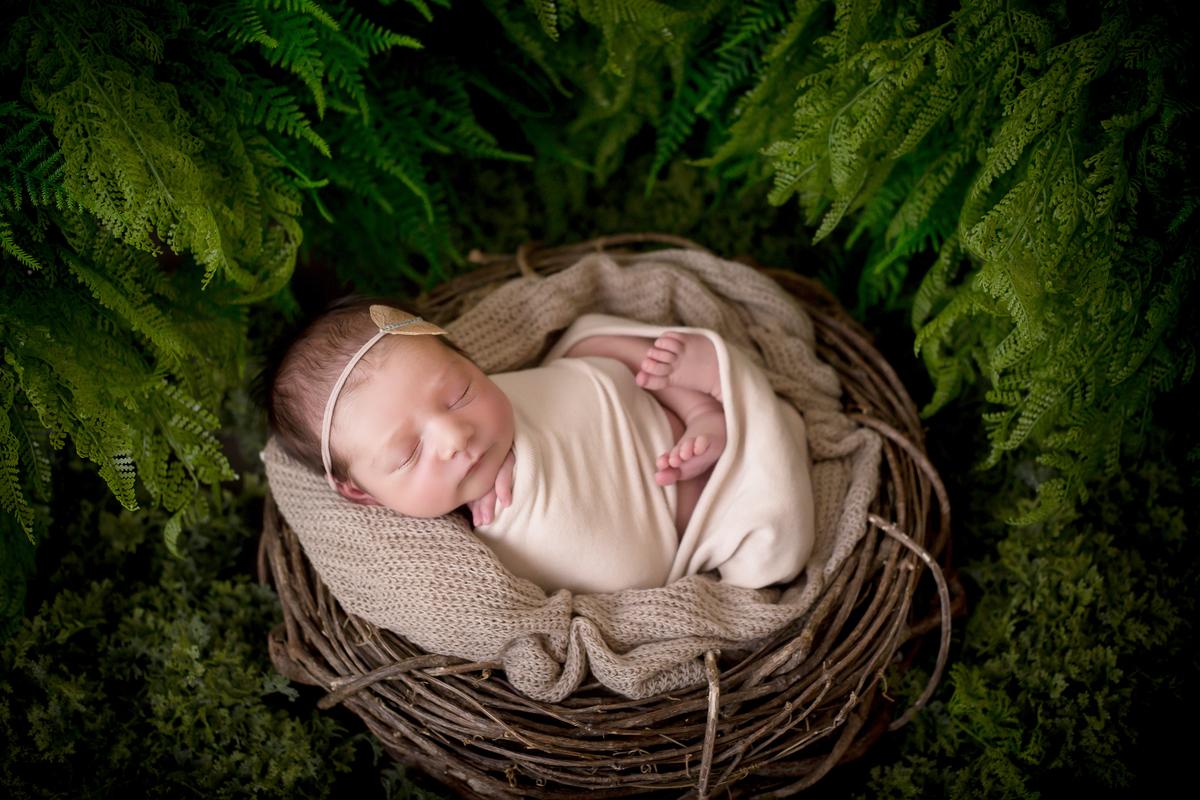 recem nascida no jardim, ensaio recem nascido, Newborn em Brasilia