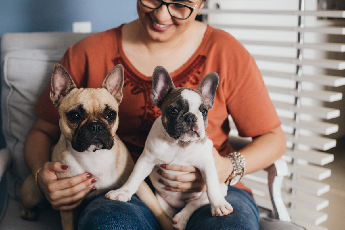 Ensio Pet em Brasilia, filhote de cachorro, newborn Pet Brasilia