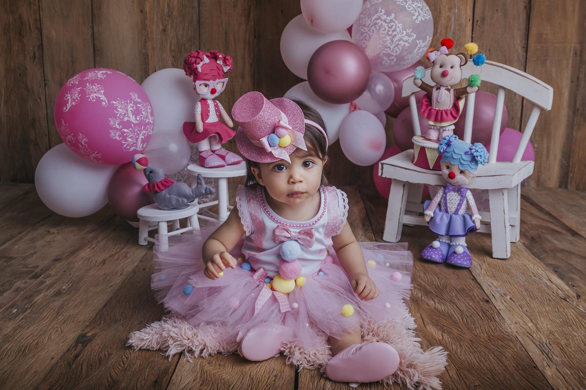 Circo rosa rustico bebe menina 13 meses Brasilia DF
