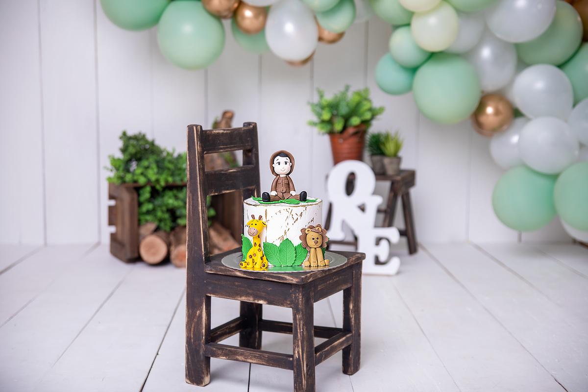 Smash the cake, tema safari, clean, atemporal