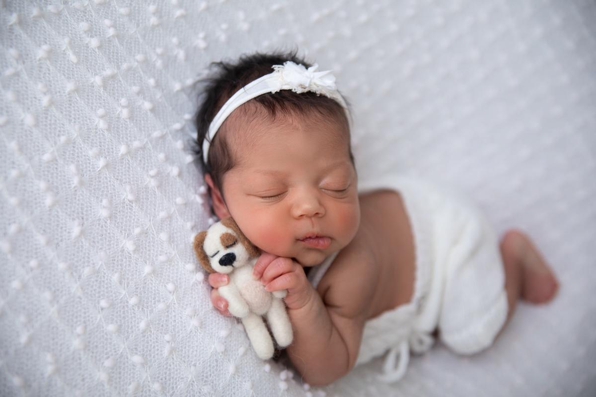 Newborn Brasília Menina, Segurando cachorinho, produção menina
