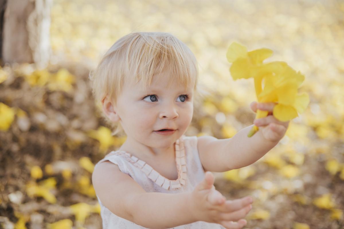 Ensaio  menina 2 anos nos ipês amarelos