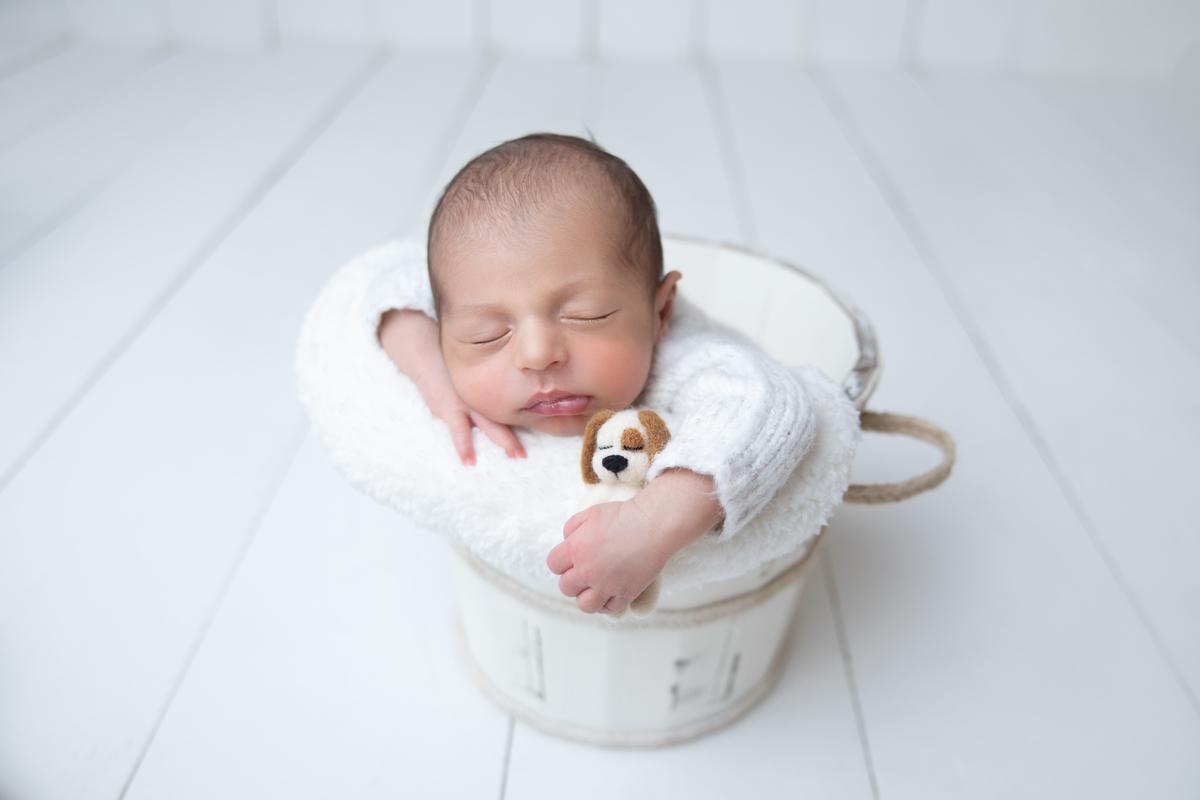Love Prop, Bebe segurando cachorrinho, ensaio de recém-nascido Gabi Aine
