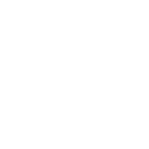 Logotipo de Nuno Lopes Photography