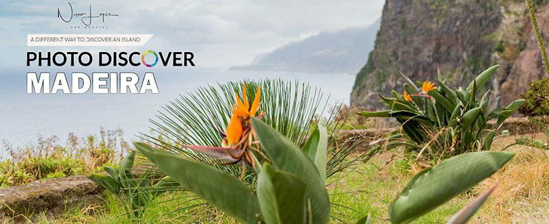 Imagem capa - Photo Discover Madeira por Nuno Lopes Photography