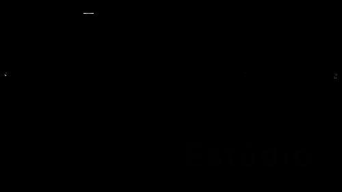 Logotipo de Eva Barros