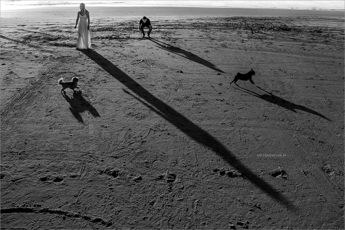 fotos de noivos na praia com seus cachorros
