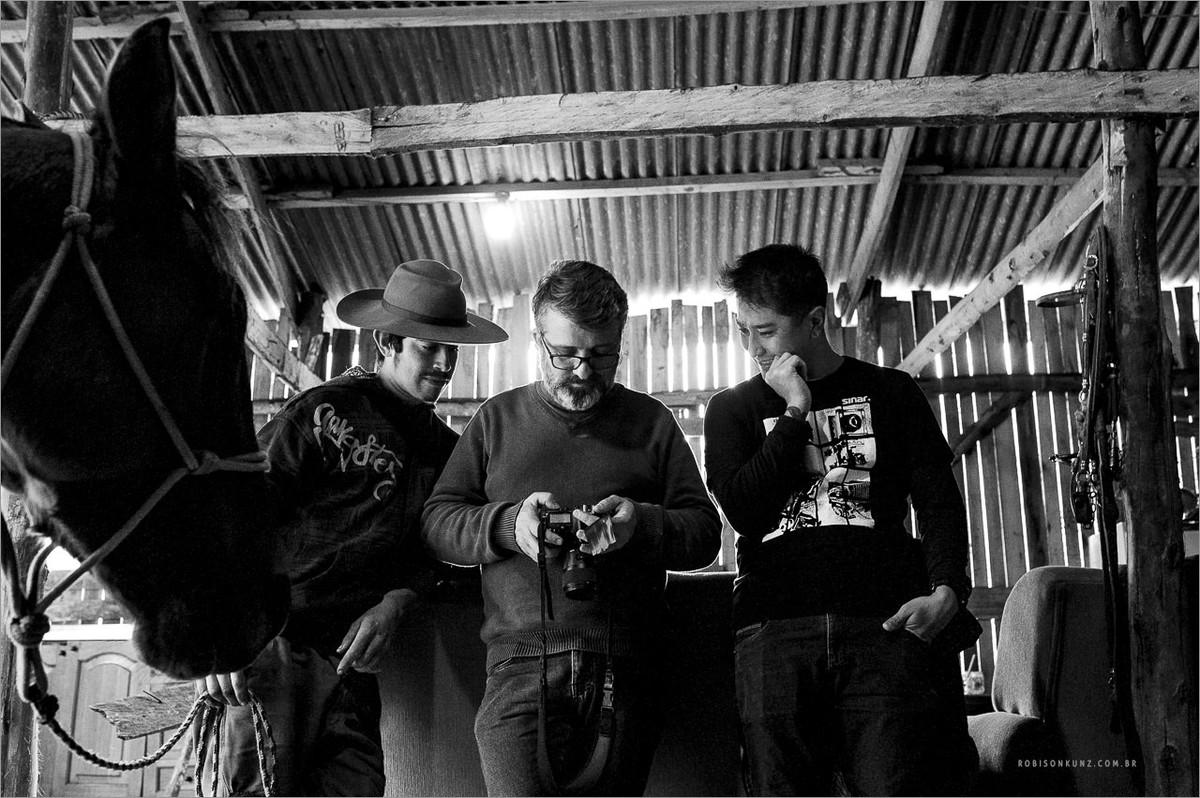 fotografos na cabanha de cavalos