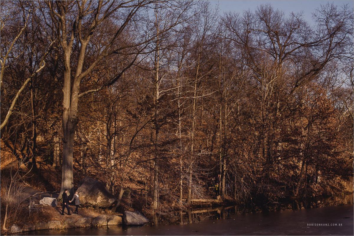 pré-casamento no central park