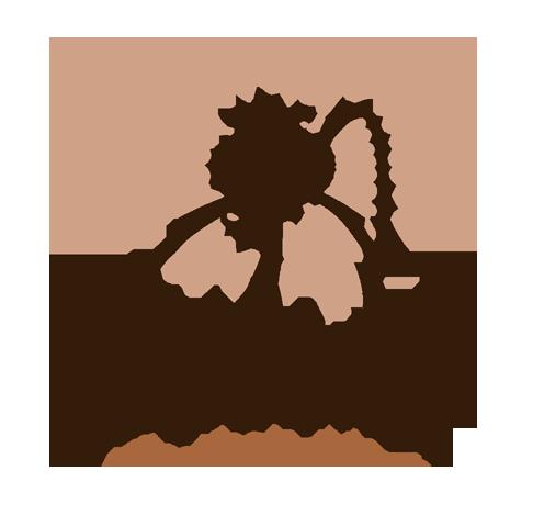 Sobre Ateliê Vídeo