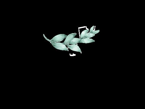 Logotipo de Thaysiane Capaverde