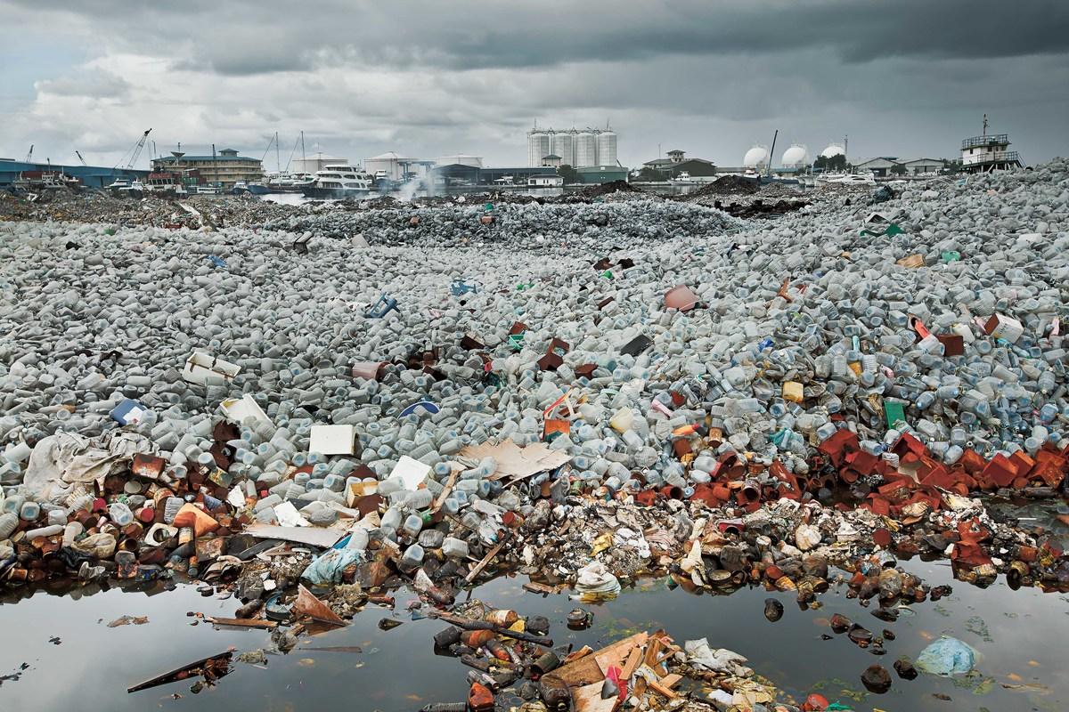 Imagem capa - A ilha de lixo por Érico Hiller