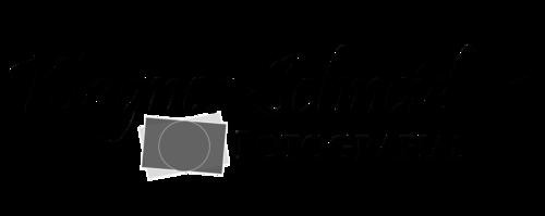 Logotipo de Wagner Schneiders