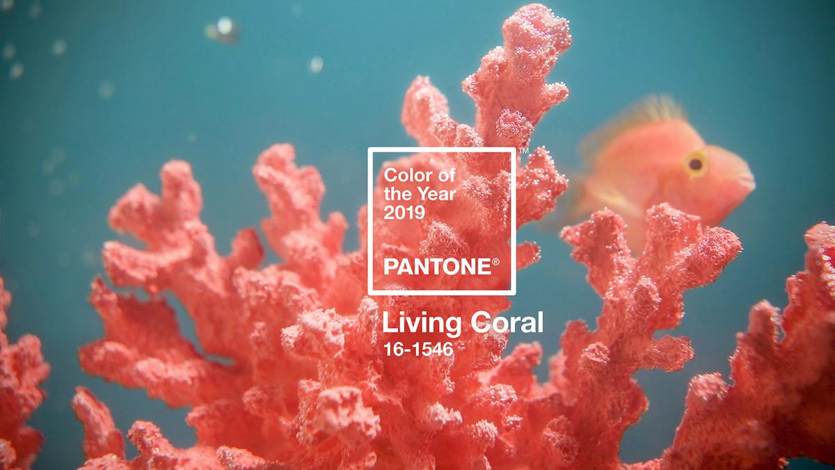 Imagem capa - Pantone aposta em uma cor que vai dar vida a muito Job! Conheça a Living Coral por Diego Augusto Durante
