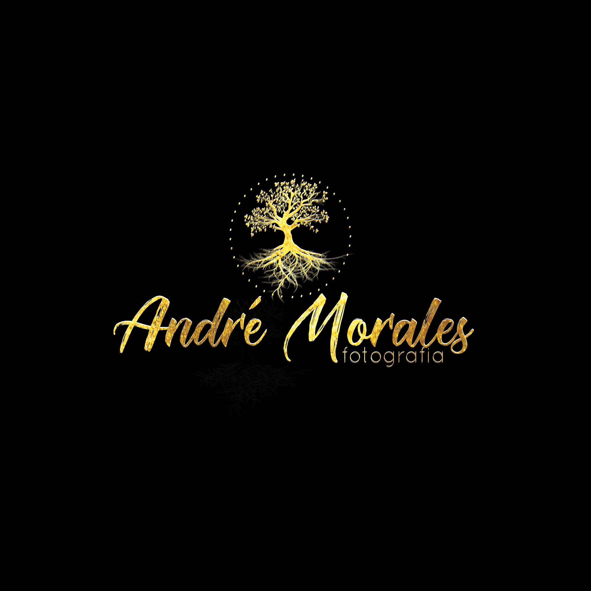 Contate André Morales Fotógrafo - Ensaio Fotográfico Sorocaba, Gestante, Feminino, Casamento ...