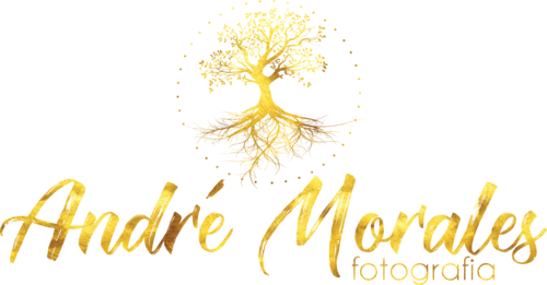 Logotipo de Andre Morales
