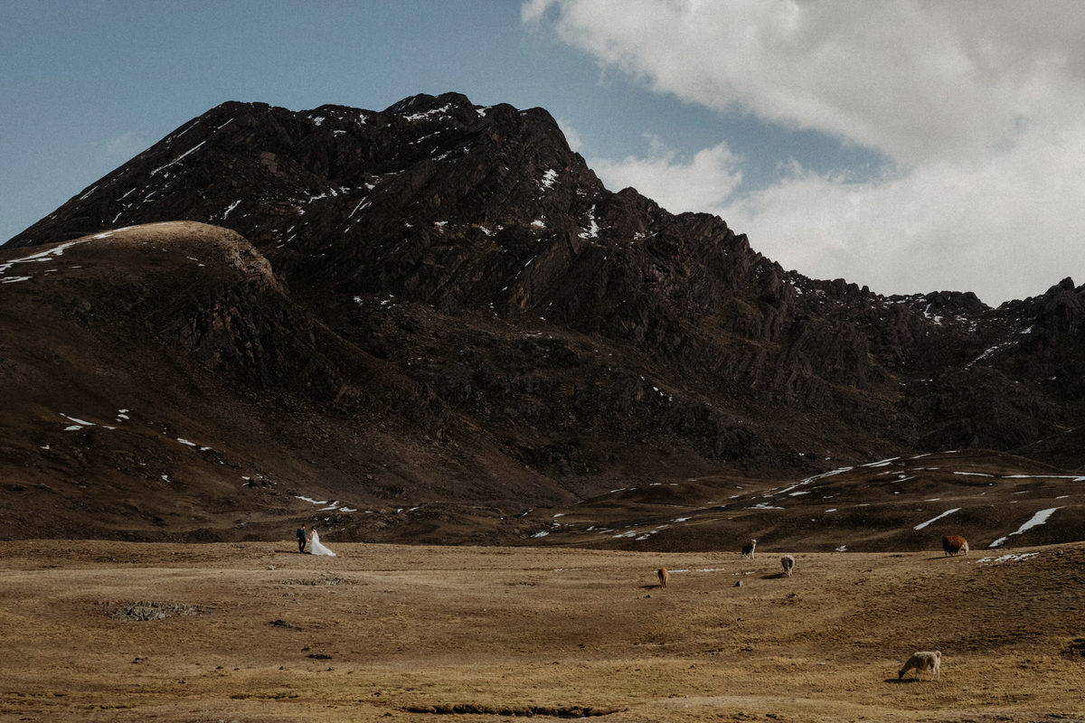 fotos de aventura con el cerro tunari y pareja de novios con llamas y vicuñas