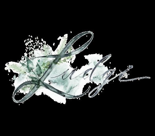 Logotipo de Ludgi Fotógrafos