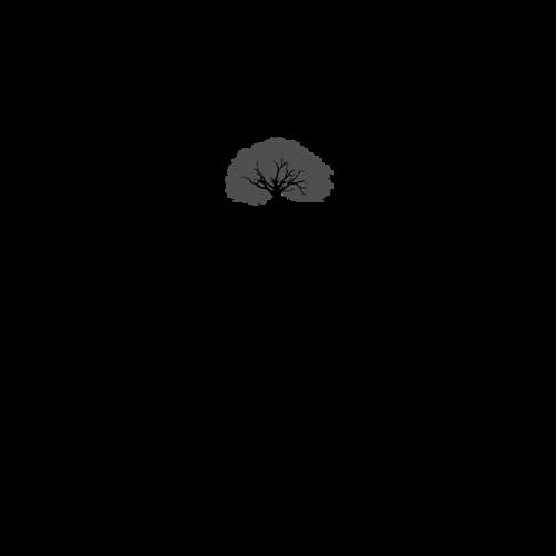 Logotipo de EVERTON RIBEIRO