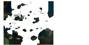 Logotipo de Estudio27