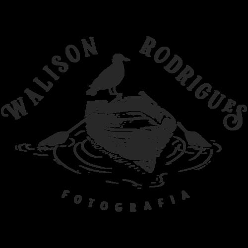 Logotipo de Walison Rodrigues