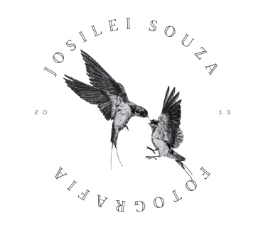 Logotipo de 2021 © Josilei Souza | Todos os direitos reservados.