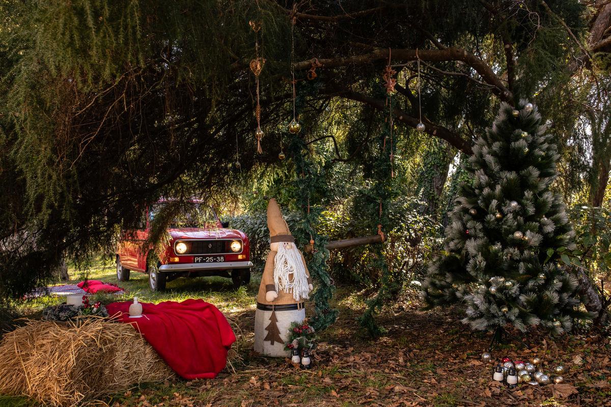 Imagem capa - Começou a preparação para as Sessões de Natal por Ana Guardado