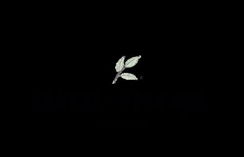 Logotipo de Ana Megs Fotografia