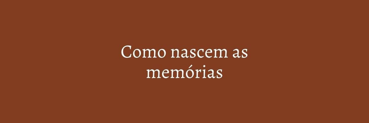 Imagem capa - COMO NASCEM AS MEMÓRIAS por Marcela Rosa