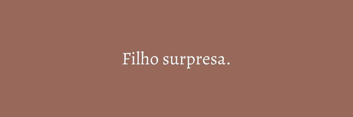 Imagem capa - O FILHO SURPRESA por Marcela Rosa