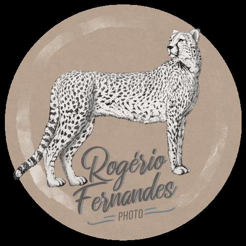 Logotipo de Rogério Farias Fernandes