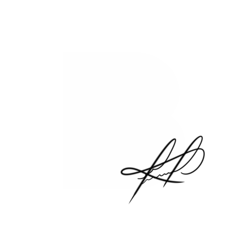Logotipo de Bruno Barreto