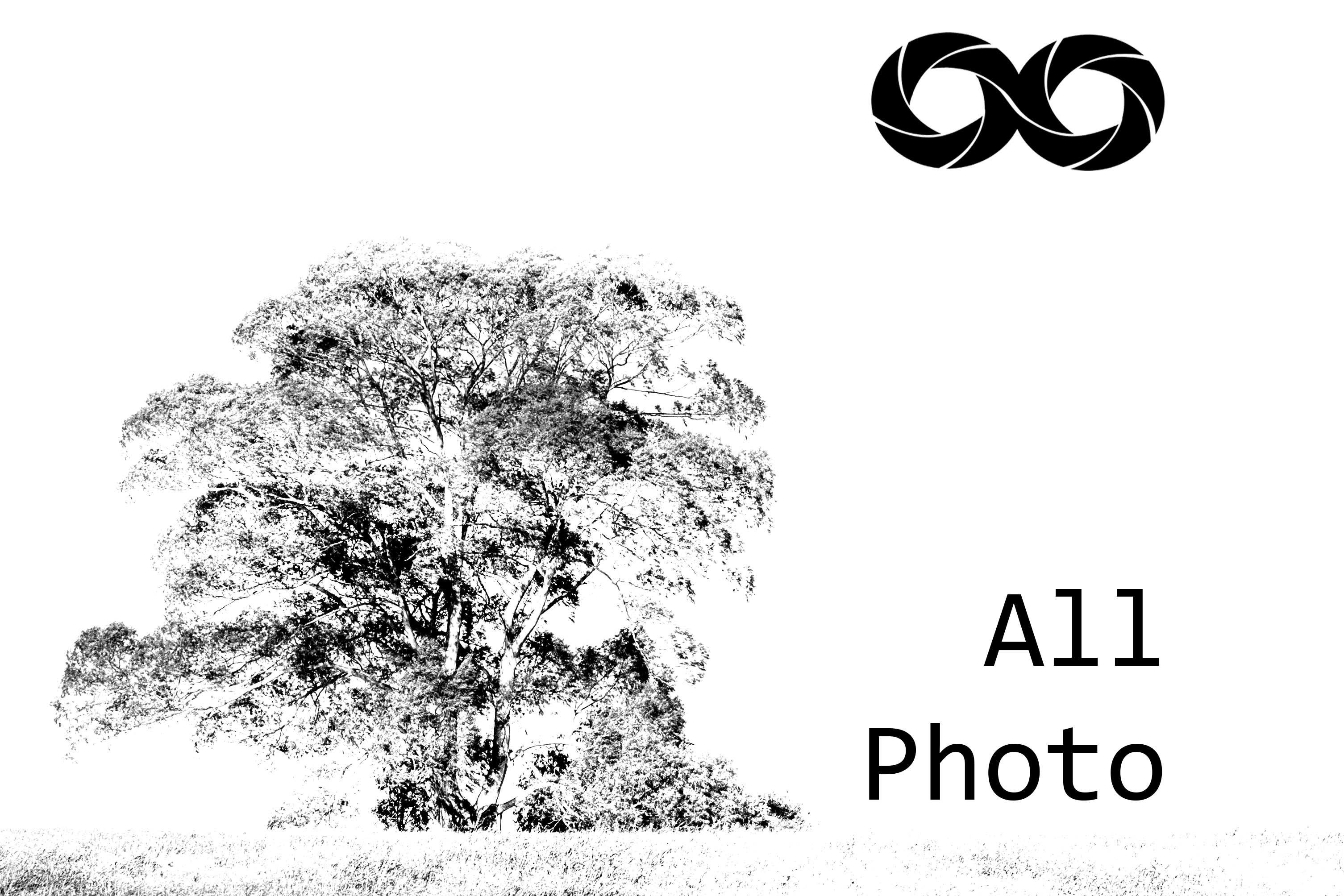 Contate AllPhoto