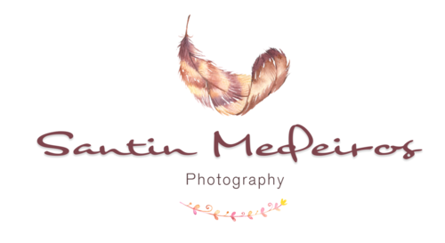 Logotipo de Fernanda Santin Medeiros