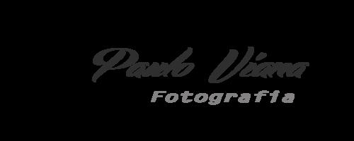 Logotipo de Paulo Sergio Viana