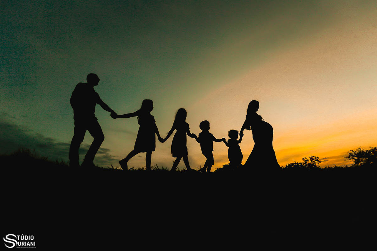 Imagem capa - Qual a vontade de Deus para a família? por Rogério Medeiros Suriani