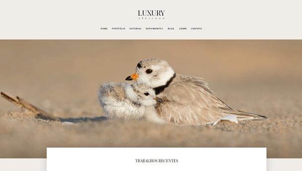Nosso modelo Luxury para fotografos sofisticados. Site para fotógrafos sofisticados.